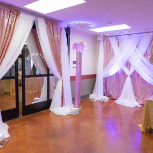 Dazzling Streaks Party Entertainers - Party Decor / Backdrops & Drapery in San Ramon, California