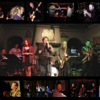 DC Babylon - Funk Band in Laguna Beach, California