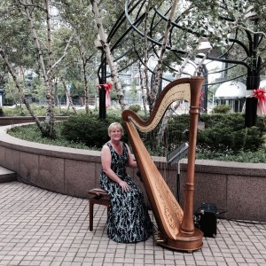 Debbie Beck,  Harpist - Harpist / Wedding Musicians in Cleveland, Ohio