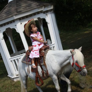 Decorated Ponies for Parties & Petting zoo too! - Pony Party / Outdoor Party Entertainment in Neshanic Station, New Jersey
