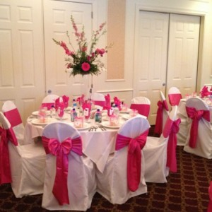 DeMarco's Party Solutions - Linens/Chair Covers / Wedding Services in Riverview, Florida