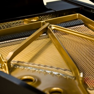 Design the Mood - Pianist / Wedding Musicians in Ithaca, New York