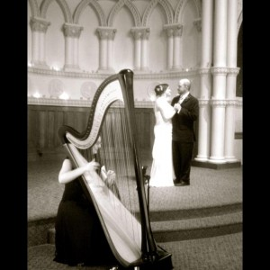 The Classic Harpist - Harpist / Wedding Musicians in Springfield, Illinois
