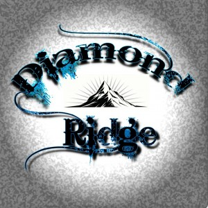 Diamond Ridge - Country Band / Country Singer in Martinez, California