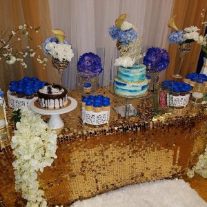 Diane Vivian Productions - Party Decor / Linens/Chair Covers in Boston, Massachusetts