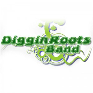 Diggin' Roots Band - Blues Band / Americana Band in Olean, New York