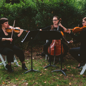 District Strings - String Quartet / String Trio in Washington, District Of Columbia