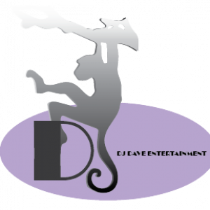 DJ Dave Entertainment, LLC - Wedding DJ in Cincinnati, Ohio