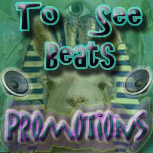To See Beats DJ Service (Formerly known as DJ Dead Llama's DJ Service) - Mobile DJ in Lees Summit, Missouri