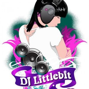 DJ Littlebit - Wedding DJ in Sarasota, Florida