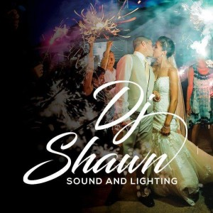 DJ Shawn - Wedding DJ in Brighton, Michigan