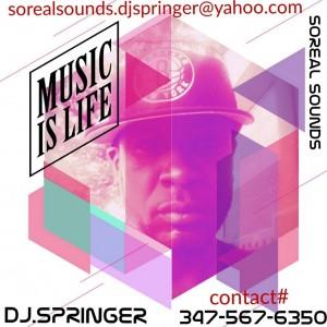D.J. Springer - DJ / College Entertainment in Brooklyn, New York