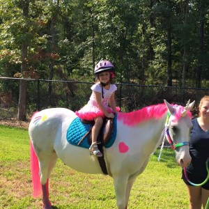 Dogwood Hills Stable & Training - Pony Party in Haughton, Louisiana