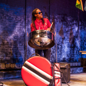 DoMo The Jack of All Trades - Steel Drum Player in Manhattan, New York