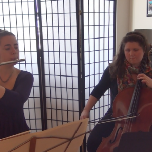 Codo Duo - Classical Ensemble / Wedding Musicians in York, Pennsylvania