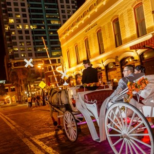 Downtown Horse and Carriage - Horse Drawn Carriage / Holiday Party Entertainment in Melbourne, Florida