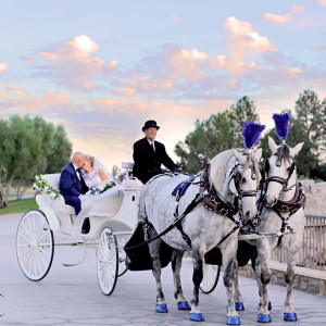 Dream Catchers Carriages - Horse Drawn Carriage / Holiday Party Entertainment in Bloomington, California