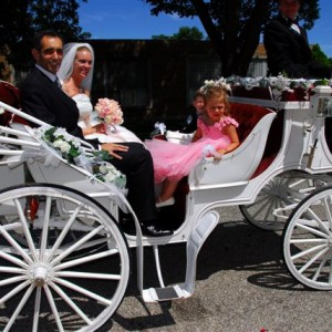 Dream Coach Carriages - Horse Drawn Carriage / Wedding Services in South Bend, Indiana