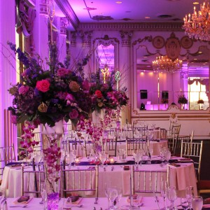 Dreamality Events - Event Planner / Wedding Planner in Bronx, New York