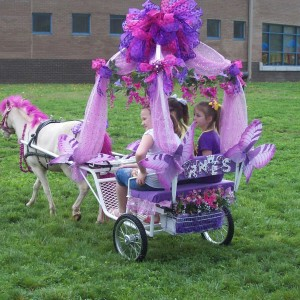 Dreamcatcher Carriage & Party Ponys - Pony Party / Princess Party in Tulsa, Oklahoma