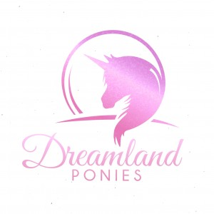 Dreamland Ponies - Pony Party / Princess Party in Bellevue, Washington