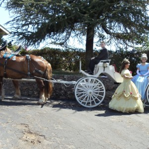 DSK Carriage - Horse Drawn Carriage / Holiday Party Entertainment in Porterville, California