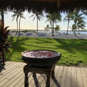 Dusktilldawnenterprises - Event Planner in Miami, Florida