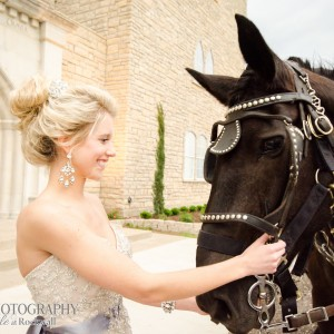 Eagle Eye Ranch Carriage Company - Horse Drawn Carriage / Princess Party in Glen Rose, Texas