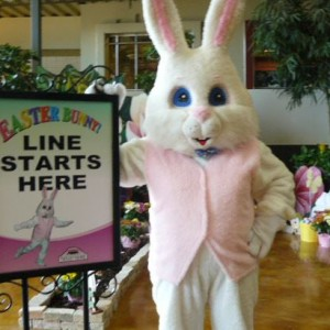 Easter Bunny - Easter Bunny in Salt Lake City, Utah