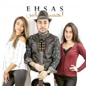 Ehsas Band - Cover Band in McLean, Virginia