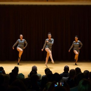 Pulse Performers - Dance Troupe / Burlesque Entertainment in Fort Wayne, Indiana