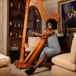 Electric Lady - Harpist in New York City, New York