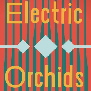 Electric Orchids - Indie Band in Kansas City, Missouri