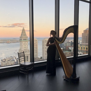 Stephanie Babirak, Harpist - Harpist in New York City, New York