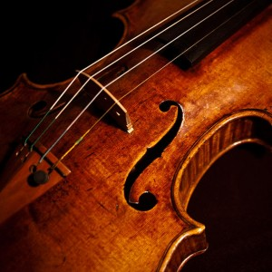 Elegant String Quartet - String Quartet / Classical Ensemble in Montclair, New Jersey