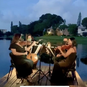 Eleganza Strings - String Quartet / Harpist in Miami, Florida