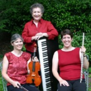 Elegant Echoes - Acoustic Band / Folk Band in Bethesda, Maryland