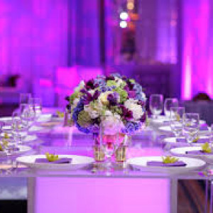 Element Event Designs - Party Decor in Arlington, Virginia