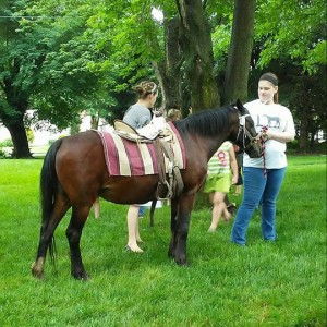 Eliezer Pony Rides and Parties - Pony Party in Worthington, Pennsylvania