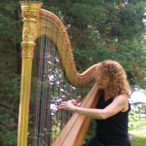 Elizabeth Borsodi, Harpist - Harpist in Sarasota, Florida