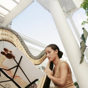 Elizabeth Steiner, Harpist - Harpist in Philadelphia, Pennsylvania