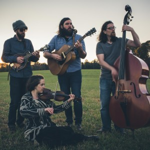 Elonzo Wesley - Americana Band / Bluegrass Band in Charlotte, North Carolina