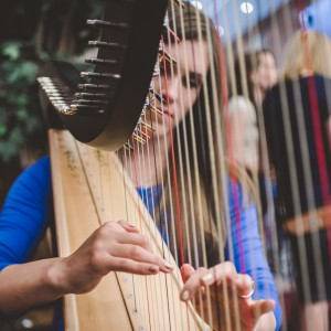 Eloquence - Harpist / Celtic Music in Logan, Utah