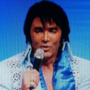 Elvis by tim welch - Elvis Impersonator in Las Vegas, Nevada