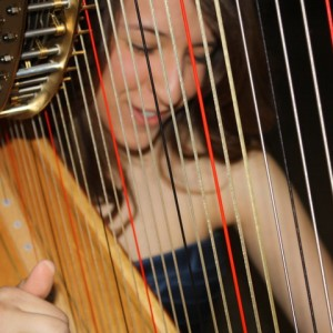 Elysia Roman Harpist - Harpist / Celtic Music in Poughkeepsie, New York
