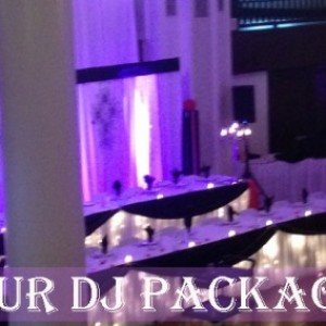 EMS Disc Jockey - Wedding DJ / DJ in Fort Wayne, Indiana