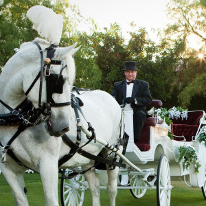 Enchanted Carriage, LLC - Horse Drawn Carriage in Thousand Oaks, California