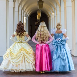 Enchanted Characters - Princess Party in Orange County, California