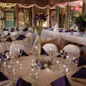 Envy Me Weddings - Event Planner in Lake Wales, Florida