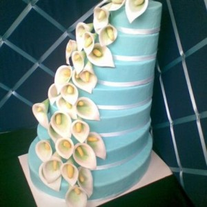 Epitome Cakes - Wedding Cake Designer / Cake Decorator in Pittsburgh, Pennsylvania